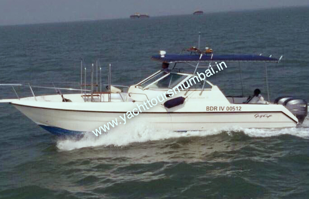 Gulf Craft 31 Canopy Speedboat in Mumbai