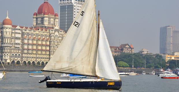 Seabird Sailboat Mumbai